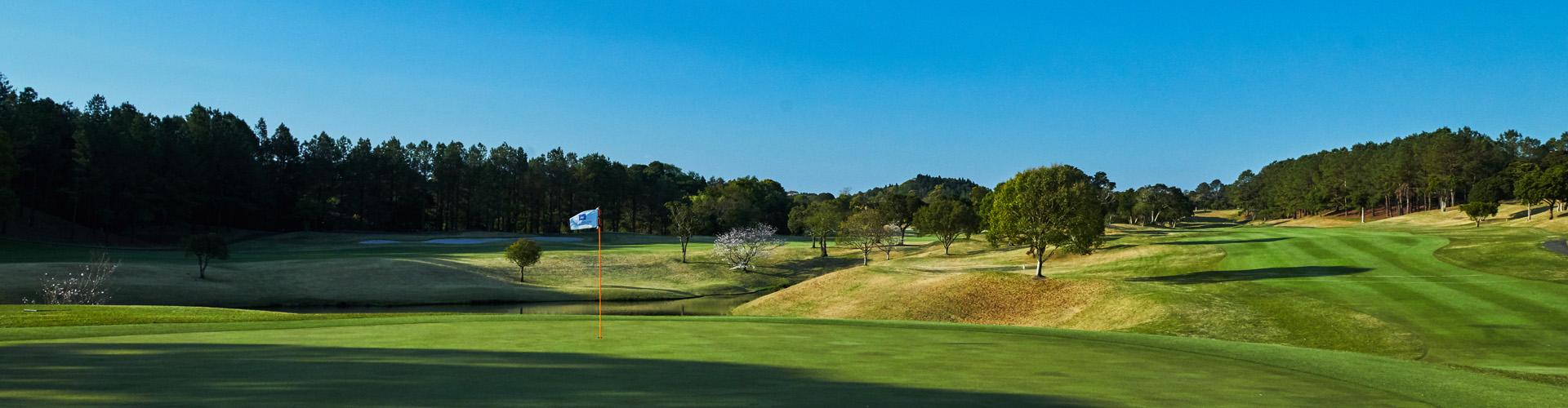 第8回アクサレディスゴルフトーナメントin MIYAZAKI「開催中止」の決定について